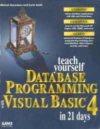 Teach Yourself Database Programing with Visual...